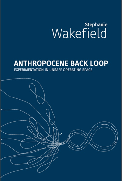 "Don't Worry, Be Scrappy: On Stephanie Wakefield's ""Anthropocene Back Loop"""